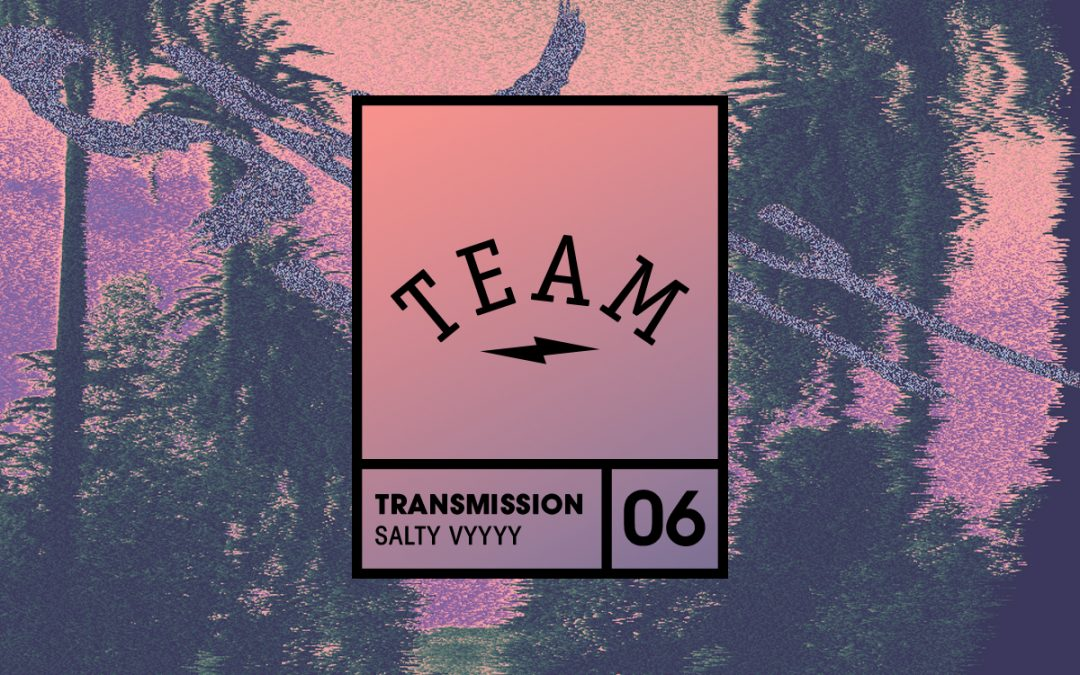 Team dauerfeuer / Transmission 06  – Salty Vyyyy